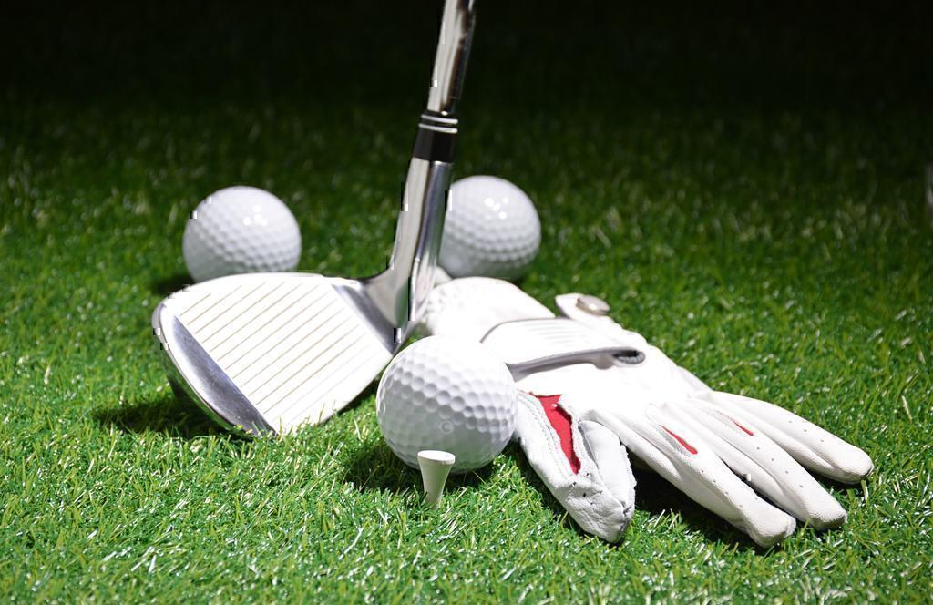FansEdge VS Total Gym VS Warrior Custom Golf Pros and Cons
