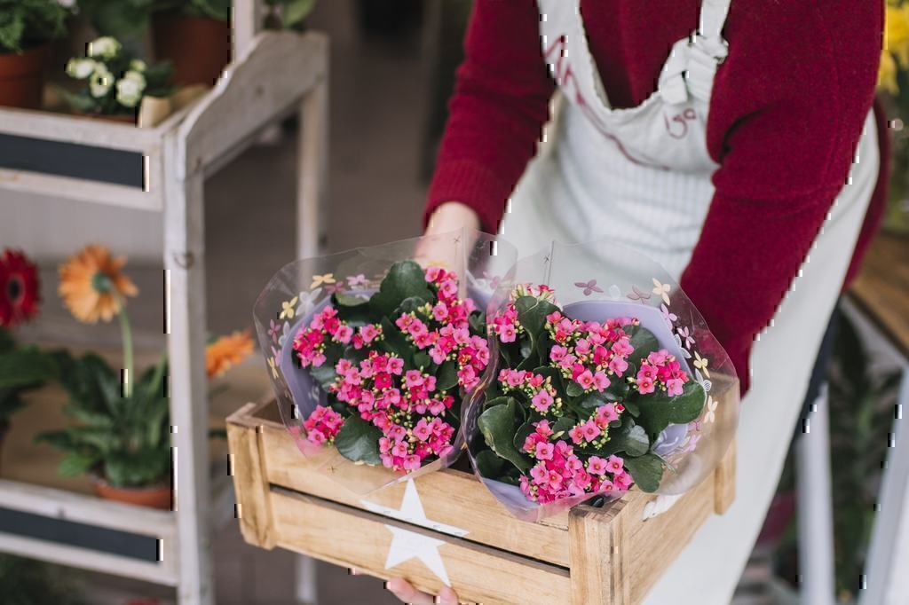 Compare Floral Delivery Companies: Just Flowers VS ProPlants VS Blooms Today