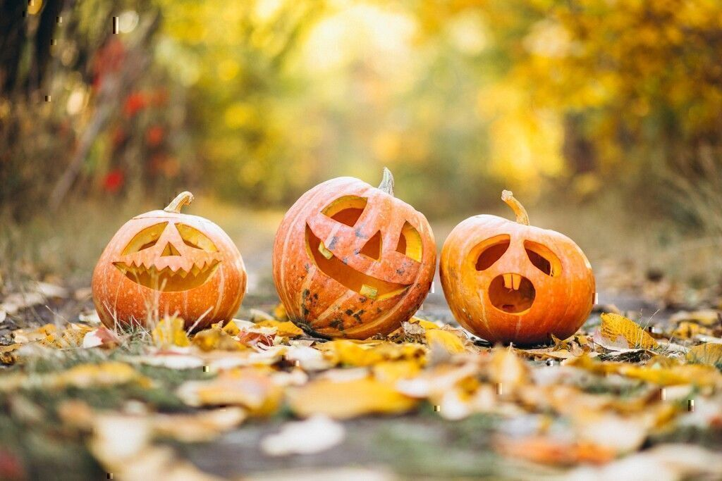 Top 5 Halloween Scams to Avoid and How to Have Fun This Year